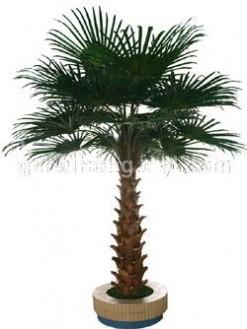 仿真华盛顿棕榈树